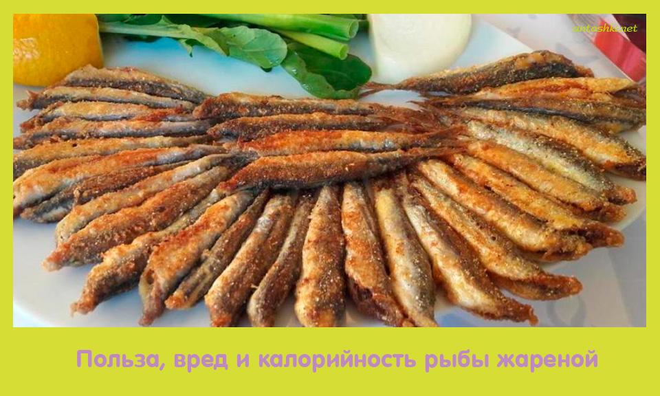 польза, вред, калорийность, рыба, жареный