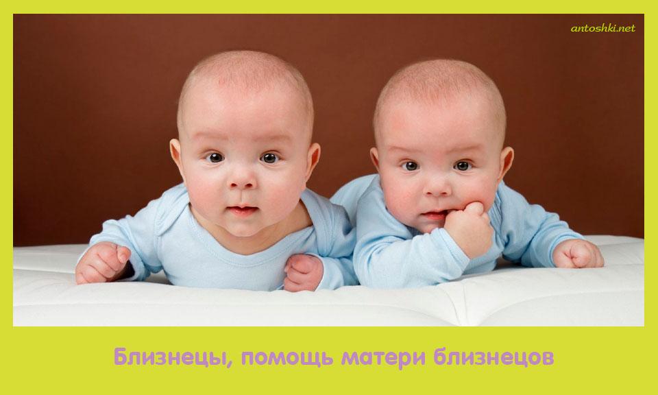 близнец, помощь, материть