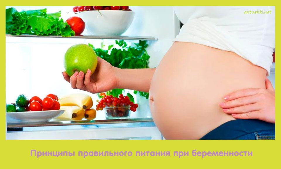 принцип, правильный, питание, переть