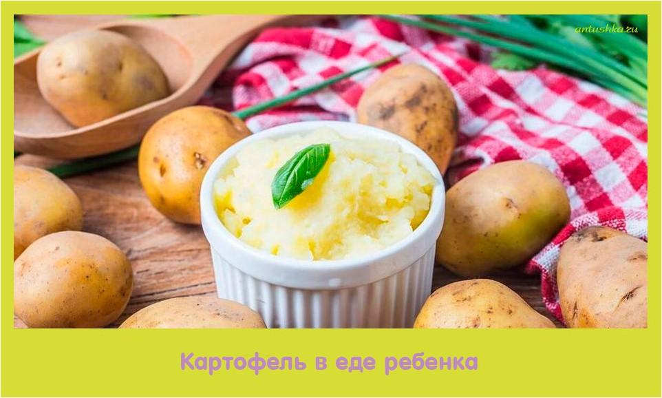 картофель, ребенок