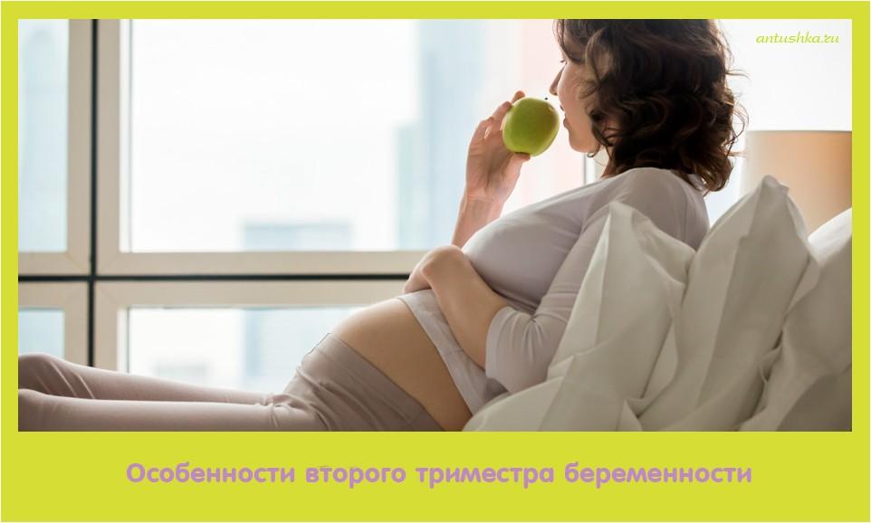 особенность, второе, триместр, беременность
