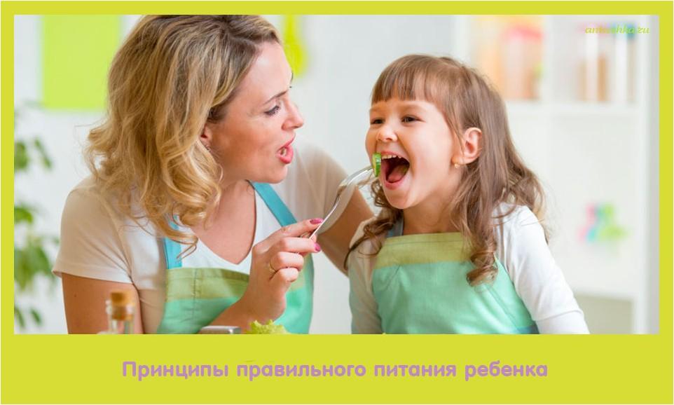 принцип, правильный, питание, ребенок
